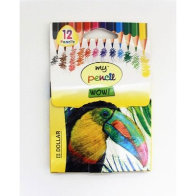 Dollar colour Pencil - Half Size: (12 colour)