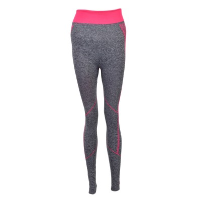 Yoga And Gymming Tights For Women